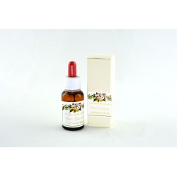 Essenza al Bergamotto 20ml